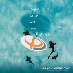 Image for social channels promoting Pekala Design during Shark Week
